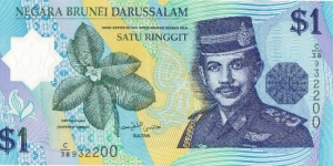 Sultan Hassanal Bolkiah, Reverse Rainforest Waterfall Size 41 x 69 mm Material Polymer Color Blue Banknote