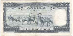 Banknote from Angola