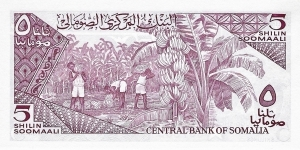 Banknote from Somalia