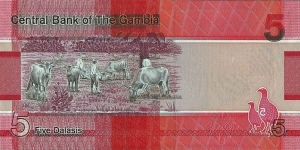 Banknote from Gambia