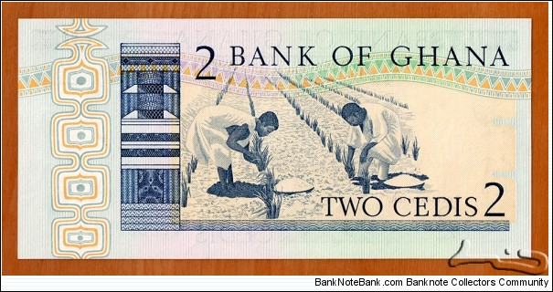 Banknote from Ghana year 1982