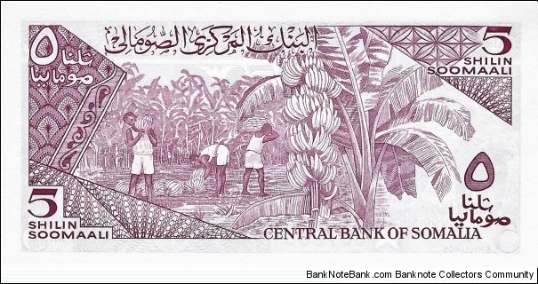Banknote from Somalia year 1983